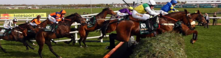 Grand National 2017