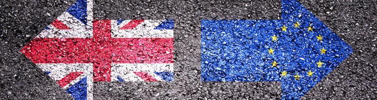fl brexit banner